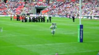 Warrington wolves mascot Wolfie knocks on at Wembley
