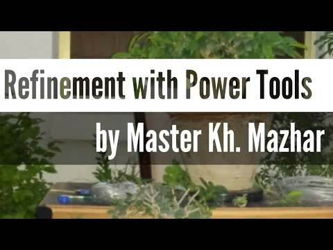 Refinement/Carving with Power Tools on Ficus Bonsai | Pakistan Bonsai Society