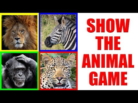 Show me the AFRICAN ANIMAL Game for Kids – Where is the animal?