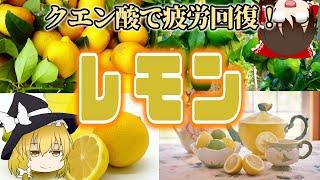 【ゆっくり解説】酸っぱくて爽快!レモンの栄養について解説!