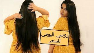 روتيني اليومي  للعناية بالشعر | My Daily Hair Routine