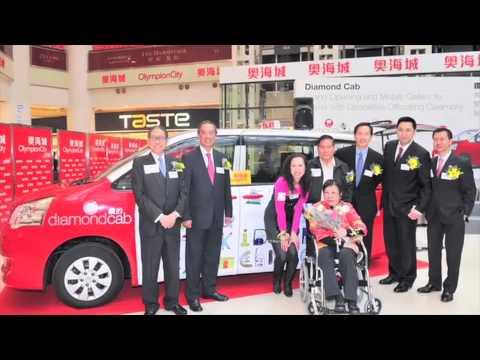 Diamond Cab: Investment of a Venture Philanthropy Fund