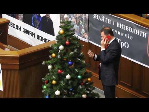 Перед заседанием Рады Ляшко решил рассмотреть новогодние игрушки на ёлке