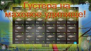 РР4 оз. Комариное -Густера на маховое удилище