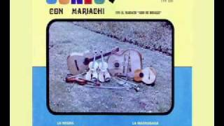 Mariachi Ario de Rosales   La Venadita