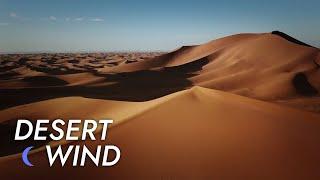 Desert Wind Sound - 10 Hours - Stress Relief   Meditate - Sleep - Study   Desert Winds