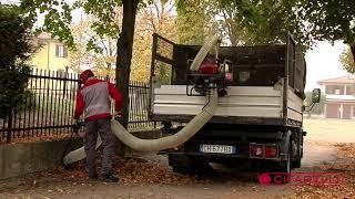 Cifarelli Spa - Aspiratore per foglie V1200PK