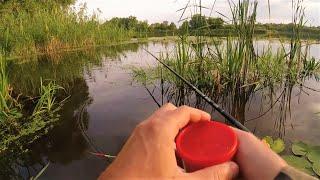 Осенняя рыбалка на поплавок Где ловить рыбу в каких местах