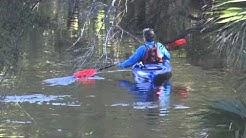 Paddling the St. Johns River