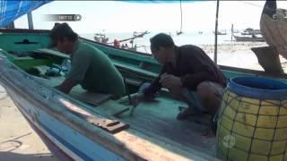 Nelayan Berharap Pemerintah Melarang Penggunaan Pukat Harimau -NET12