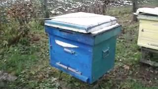 Пчеловодство. Утеплять или нет?