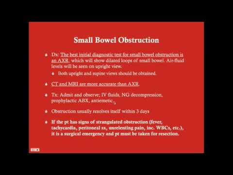 Small Intestine - CRASH! Medical Review Series