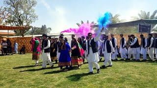 Pukhtoon Culture Dance (Attan) in Comsats Wah | Student Week Sp 19 | Culture Day