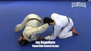 Tripod Side Control Escape by Jay Regalbuto of South Jersey Brazilian Jiu-Jitsu • Nogi Bear®