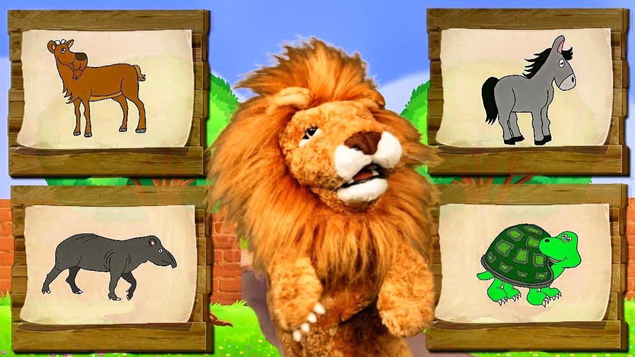 Canciones Infantiles del Zoo - El León Lorenzoo nos presenta a los animales - Videos Educativos #