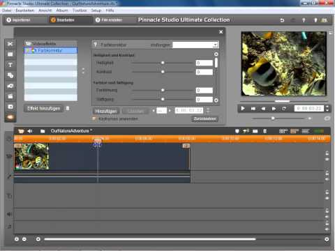 Keyframe Animation in Pinnacle Studio 14 und 15
