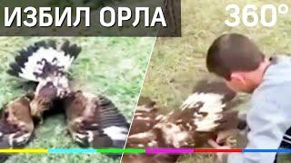 На 120 тысяч рублей оштрафовали депутата, избившего краснокнижного орла
