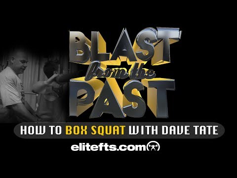 How To Box Squat W/ Dave Tate - Blast From The Past | Elitefts.com