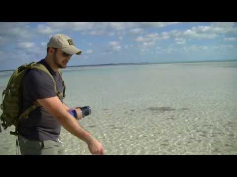 Desert Island Survival- Bottle Fishing Rig- Black Scout Tutorials