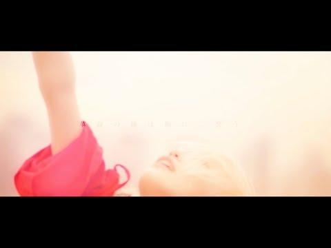 """ぜんぶ君のせいだ。""""革鳴前夜""""Official MusicVideo"""