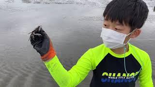 갯벌체험 대부도 방아머리해수욕장 조개잡이