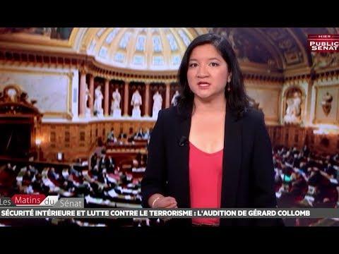 Sécurité intérieure et terrorisme, audition de Gérard Collomb - Les matins du Sénat (06/07/2017)
