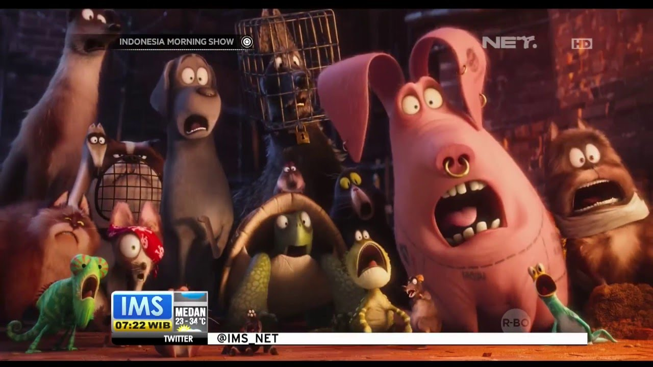 35++ Gambar animasi kartun hewan keren terbaru