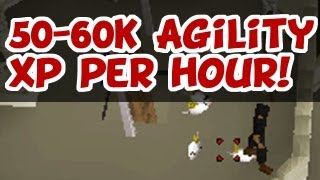 RuneScape 2007 - 50-60K Agility XP Per Hour! (Toy Mice)