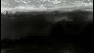 Safiye Ayla - Menekşelendi sular