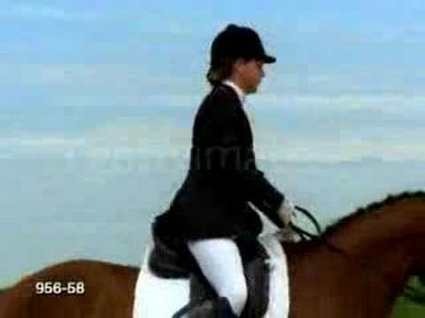 Dressage music video; Make Love in this club.