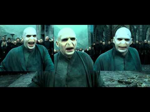 Voldemort Sparta Remix