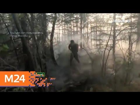 """""""Климат-контроль"""": какая погода ожидает москвичей в ближайшее время - Москва 24"""