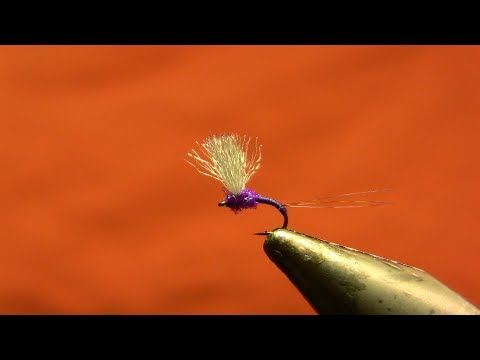Purple Upbeat (Upright) Baetis | Yellowstone Country Fly Fishing