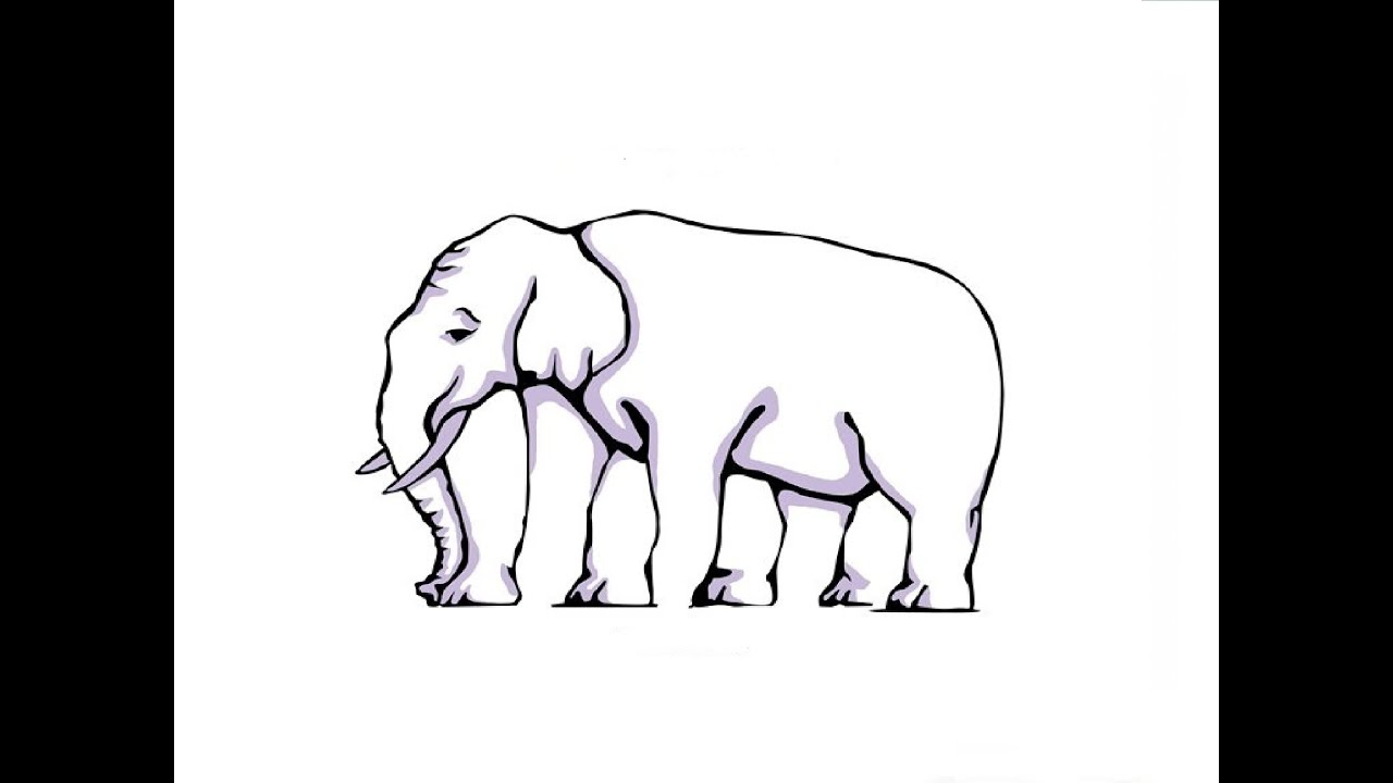 Illusion med elefant