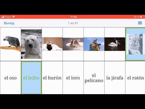Первые слова на испанском - 1набор