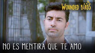No es mentira que te amo | Wounded Birds (Yaralı Kuşlar) Capítulo 101