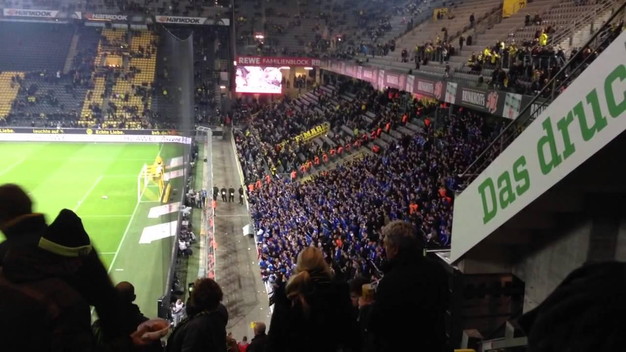 Schalke Ii