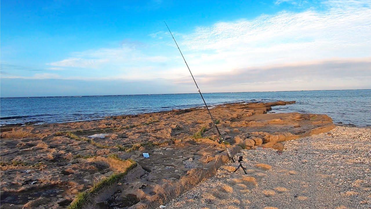 魚が集まる岩場、夜になると現れる謎の大物に挑んだ結果…