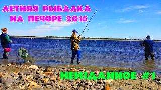 ЛЕТНЯЯ РЫБАЛКА НА ПЕЧОРЕ 2016 / НЕИЗДАННОЕ #1 / SUMMER FISHING 2016 / unreleased # 1