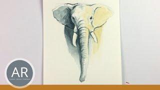 Video Elefant Zeichnen Lernen