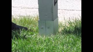 Mailbox Post Protector: Installation Video