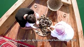 Al Suwaidi Pearls Farm - مزرعة لآلئ السويدي