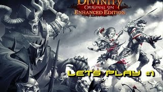 Divinity: Original Sin Enhanced Edition Lets Play #1 & Game Discussion
