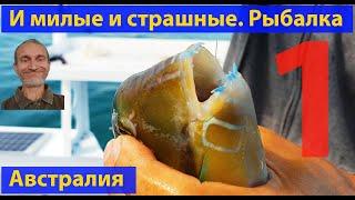 Морская рыбалка видео для рыбаков Океанские рыбы и твари лучшее Часть 1 видео 393