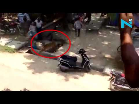 On Cam: Leopard attacks five people in Allahabad