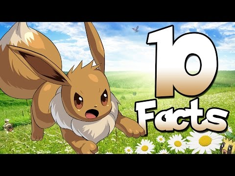 10 Facts About Eevee That You Probably Didn't Know! (10 Facts) | Pokemon Facts