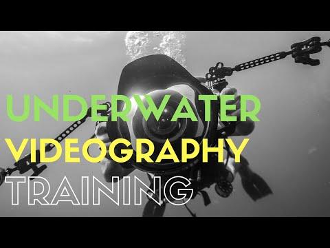 Underwater Videography Training - Koh Tao liquid media