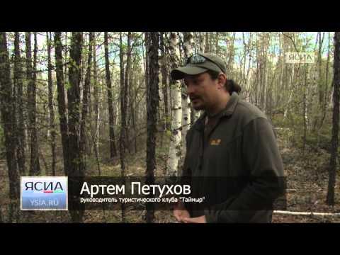 Памятка для туриста: что делать, если вы заблудились в лесу
