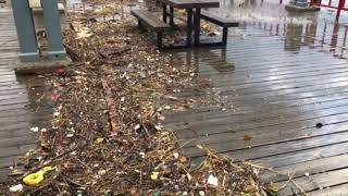 South Haven Municipal Marina floods during high waves