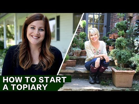 How to Start a Topiary w/ Linda Vater // Garden Answer